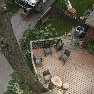 A tree damaging property that needs to be removed in Omaha, NE